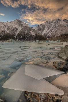 Ice Floes, Lake Tasman Glacier. South Island, New Zealand