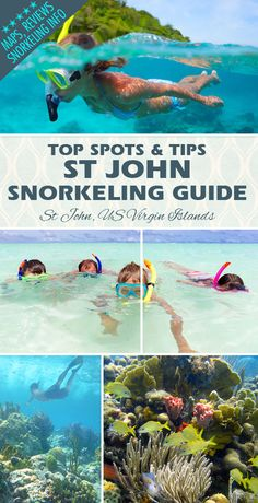 The #1 Guide to St John's TOP SNORKELING BEACHES and SPOTS. Find maps, reviews, tips and directions.