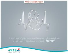 The heart is truly an incredible organ! #TheIncredibleHeart #AsianHeartInstitute