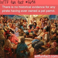WHOA! ...pirates and parrots - WTF weird and interesting fun facts