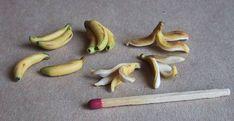 miniature bananas