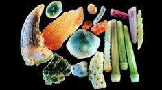 sand-magnified4