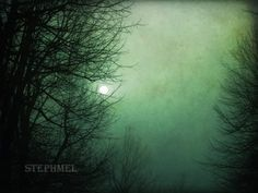and the moon and the stars and the world, fine art photograph by stephmel