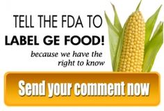 Today, the Center for Food Safety (CFS or the Center) applauded the submission of a record-breaking one million public comments to the Food and Drug Administration (FDA) calling on the agency to require the labeling of genetically engineered foods.