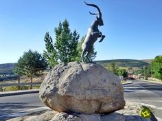 Hoyos del Espino es una localidad situada al sur de la provincia de Ávila, en la cabecera del río Tormes, en la comarca de El Barco de Ávila y Piedrahita, siendo la puerta de acceso al Macizo Central de Gredos.