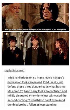 Perfect description of the scene...especially Snape's facial expression.
