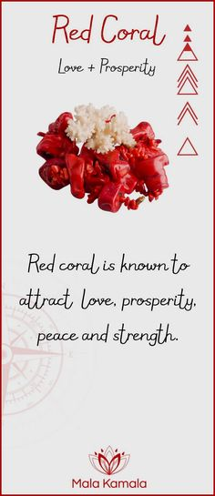 What is the meaning and crystal and chakra healing properties of red coral? A stone for love and prosperity.What is the meaning and crystal and chakra healing properties of red coral? A stone for love and prosperity. Crystals Minerals, Crystals And Gemstones, Stones And Crystals, Gem Stones, Stone Beads, Reiki Symbols, Crystal Magic, Crystal Meanings, Chakra Healing