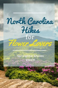 Are you ready for spring flowers to bloom? Check out these hikes in North Carolina! // Article by Blue Cross Blue Shield North Carolina #TravelDestinationsUsaNorthCarolina