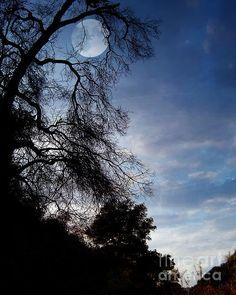Shadowlands Moon
