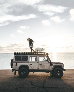 """2,028 Likes, 3 Comments - @landroverphotoalbum on Instagram: """"Excellent work by @tristanfopma #landrover #Defender110CSW #landroverdefender #landroverphotoalbum…"""""""