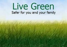There are cheaper, healthier alternatives to living a safer, healthier lifestyle!  #green #nontoxic #melaleuca