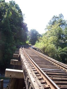 These train tracks are a bridge and i did stop here, and didn't walk over the bridge. I was visiting Alabama, and it was a beautiful hike this day.