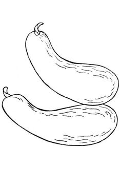 Calabacines  sc 1 st  Pinterest & fruit bowl coloring page | Food | Pinterest | Middle school art
