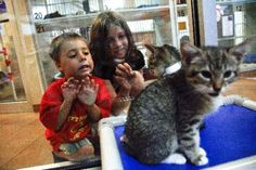Longmont Humane Society makes plea for donations to avoid foreclosure