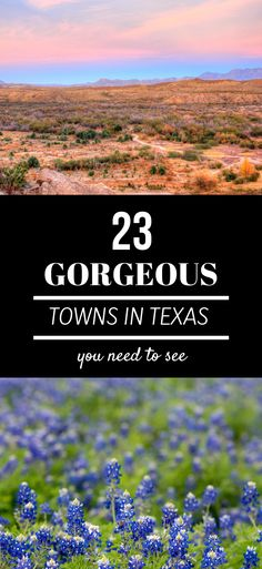 Small Towns In Texas That You Need To Visit 23 Gorgeous Small Towns In Texas You Need To See. From Marfa to Wimberley this travel guide covers all the best small towns in Texas. Texas Getaways, Texas Vacations, Texas Roadtrip, Texas Travel, Travel Usa, Texas Tourism, Dallas Travel, Oregon Travel, Travel Logo