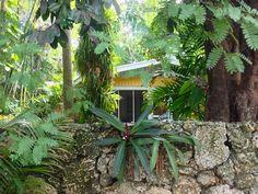 Authentic Florida - Miami's Charming Coconut Grove