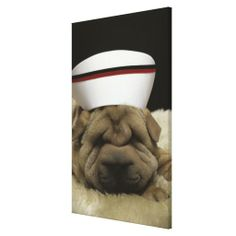 Chinese Shar-Pei Stretched Canvas Print today price drop and special promotion. Get The best buyShoppingReview from Associated Store with this Deal...
