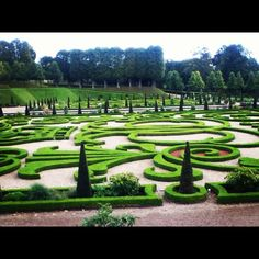majbrittarildsen #garden #frederiksborg~slot #amazing #wierd #big #denmark #danmark #danish #castle #slot #slotshave #overdrevet #green #leaf #fall #autunm