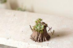 Etsy の little tree low by harimogura