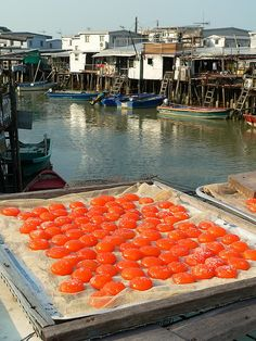 The people of Tai O,