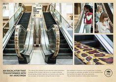 Anaconda for Johannesburg Zoo #Advertising #Zoo