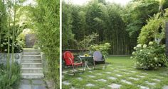There are dozens of varieties of evergreen bamboo in all shapes and sizes that are hardy almost everywhere in New England. This home in the Hamptons is a great example of what you can do with it. This look is totally achievable anywhere and will still be mostly lush and green in the dead of winter! (Just replace the lawn grass with evergreen ground covers)