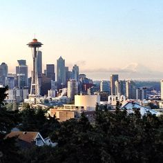 I think this is the best view of the Seattle skyline, and a great place to take out of town guests.  Would be especially perfect while drinking a Rooibos tea latte from the Cederberg Tea House, which is nearby.  :)