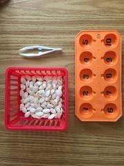 Montessori activity trays - orange pumpkin tray only no numbers