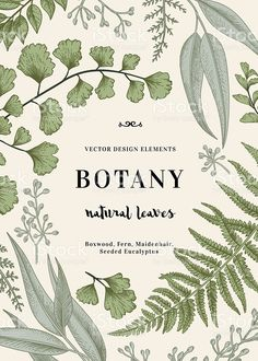 Botanical illustration with leaves. royalty-free stock vector art