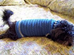 Ravelry: Size Small