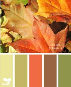 This is basically the color scheme of my living room, and much of my house. Sage green, lime green, orange, brown, red, with dark woods, silver-metallic and white ceramic accents.