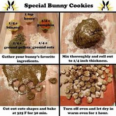 Cookies for bunny recipe