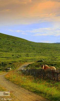 Jotunheimen, Norway by Kari  Meijers on 500px