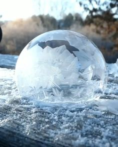 Amazing ice bubble - Discover Animal - Re-Wilding Beautiful Nature Scenes, Amazing Nature, Beautiful World, Amazing Art, Ice Bubble, Cool Pictures, Cool Photos, Wow Video, Oddly Satisfying Videos