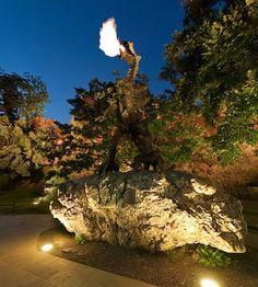 smok wawelski in krakow Poland, Roots, Decoupage, Vacation, Nature, Travel, Life, Vacations, Naturaleza
