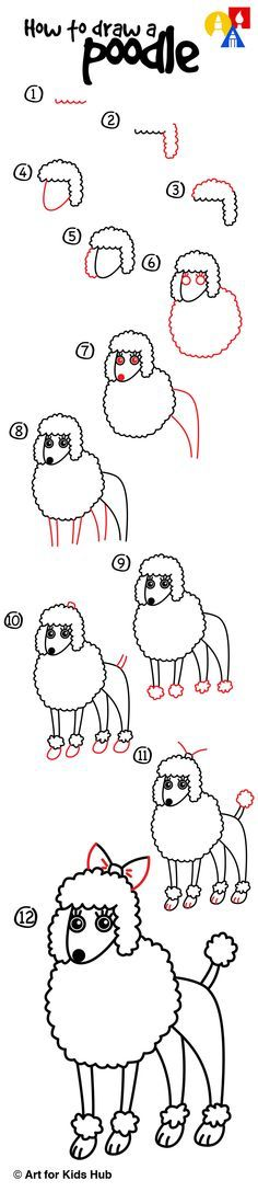 How to draw a poodle.