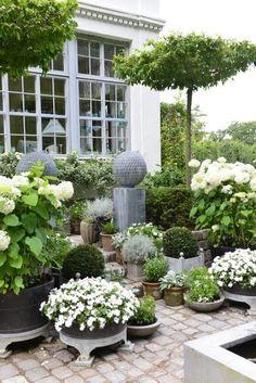 Formal white garden More