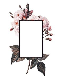 Floral Rectangle Logo Snap Case for iPhone 6 & iPhone - Leggings Flower Background Wallpaper, Framed Wallpaper, Flower Backgrounds, Logo Background, Beauty Background, Pattern Background, Wallpaper Quotes, Wallpaper Backgrounds, Iphone Wallpaper