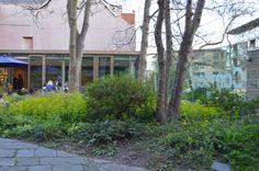 Camden Arts Centre Garden