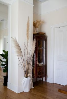 Design Sponge/ Nathan and I have a habit of collecting precious nature bits.  The curio cabinet was my grandmother's, it houses many of the odd things we have found over the years.  The pampas grasses were my Valentine's day bouquet.