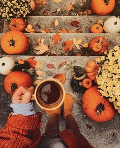 Pumpkins in many cases are beautiful circular, brilliant lemon, and in autumn they must not be missing particularly on Halloween. Pic Tumblr, Fall Tumblr, Winter Poster, Street Design, Fall Inspiration, Autumn Aesthetic, Cozy Aesthetic, Autumn Cozy, Autumn Fall
