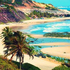 Alagoas-Praia do Amor colours.Linda visão!