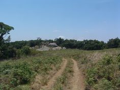 hike up Dedza Mountain in Malawi http://www.trailheadstudios.com/index.html