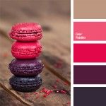 bright pink color, color of fuchsia, color palettes for decor, colors for decor, contrasting colors, dark shades of violet, magenta, magenta color