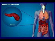 symptoms of pancreas disease
