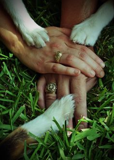 Engagement Photo by Lynea Upson with Aggie Rings - for the couple with more than one dog child.
