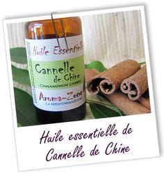 Fiche bibliothèque technique huile essentielle de Cannelle de Chine - Cinnamomum cassia