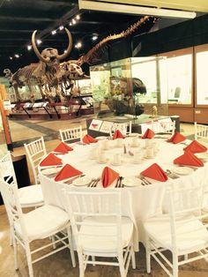 The Natural History Museum, Ann Arbor Michigan