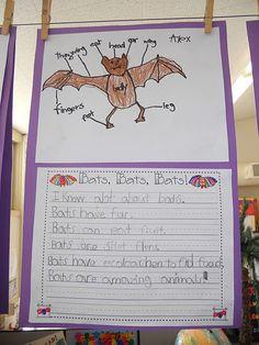 Label bats