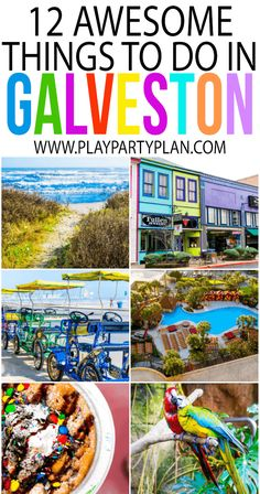 The ultimate guide of things to do in Galveston Texas, it's not just somewhere you can go on a cruise! With everything from an indoor rainforest to an awesome waterpark, there's so much more than just cruises out of Galveston! One of my favorite places Texas Vacations, Texas Roadtrip, Texas Travel, Travel Usa, Texas Getaways, Beach Vacations, Viaje A Texas, Travel With Kids, Family Travel
